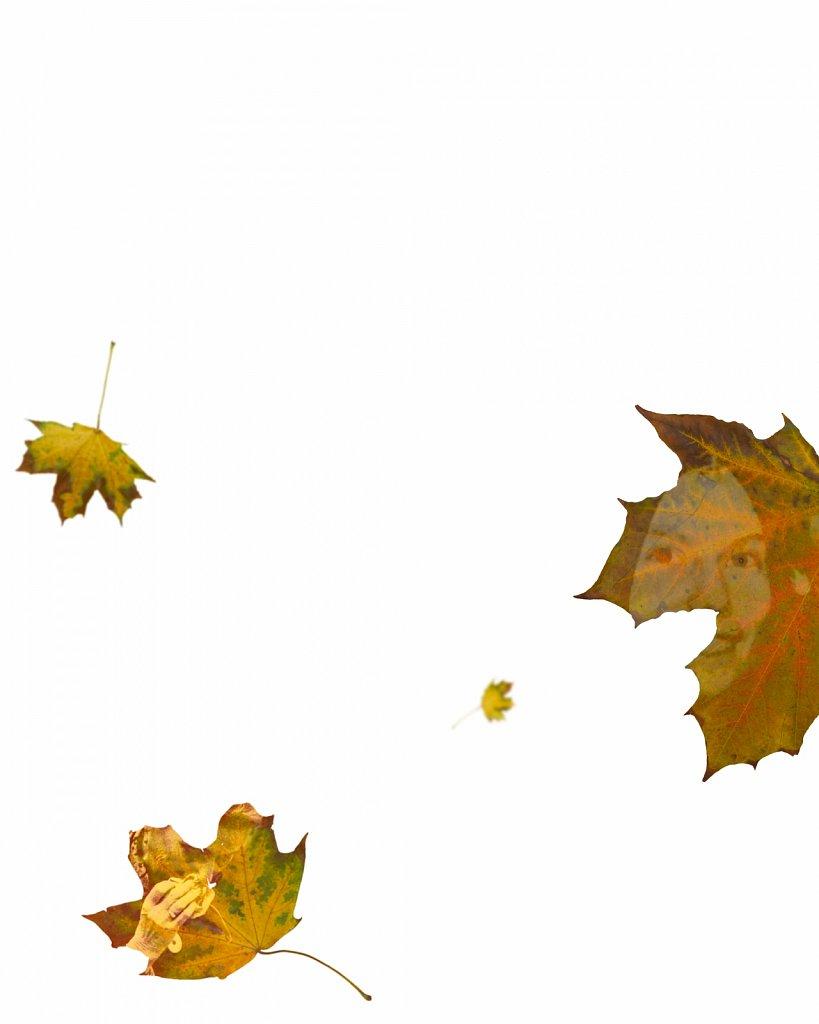 Human Leaves I